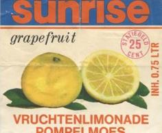 Vruchten limonade